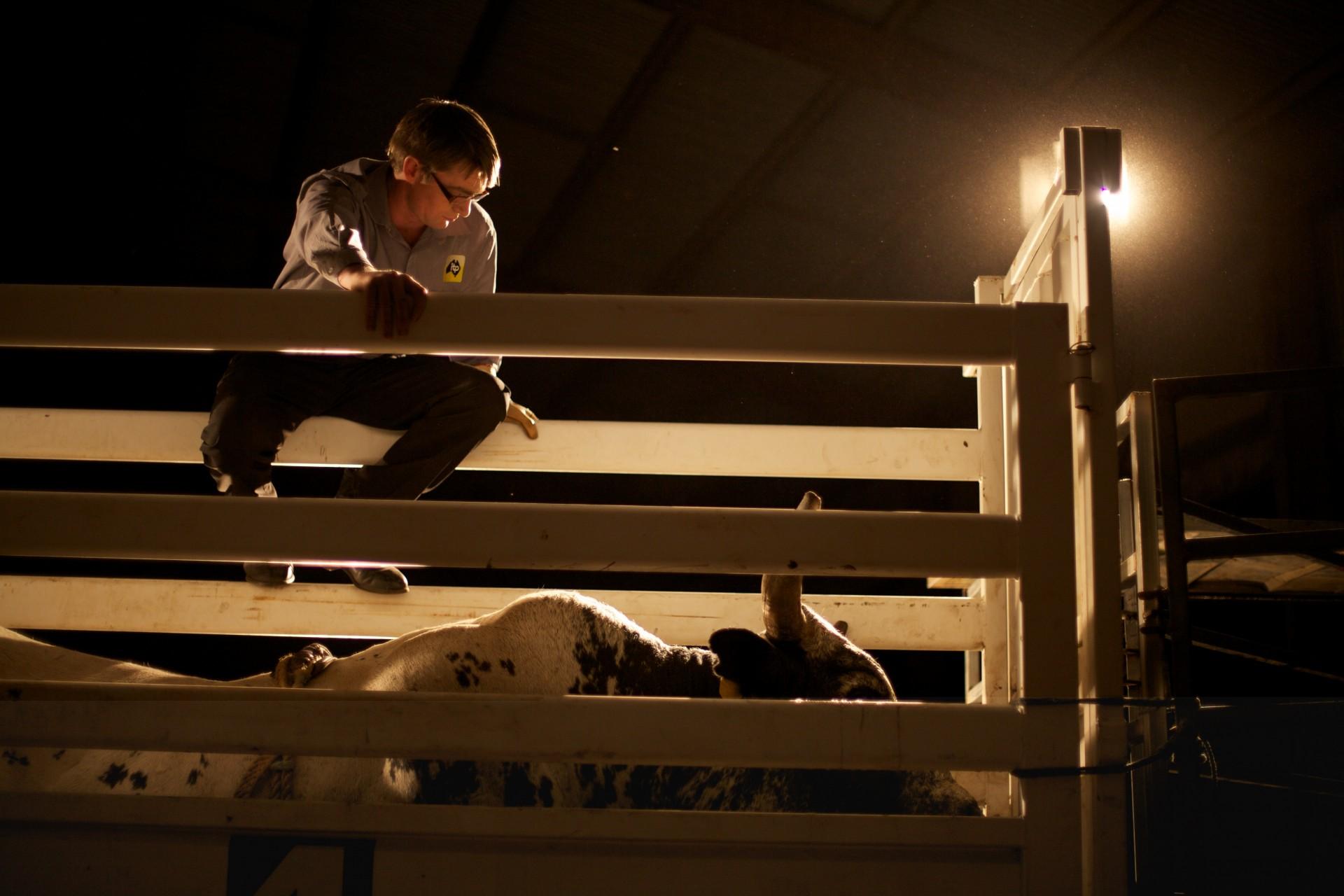 ITP Rodeo Shoot Stills 262